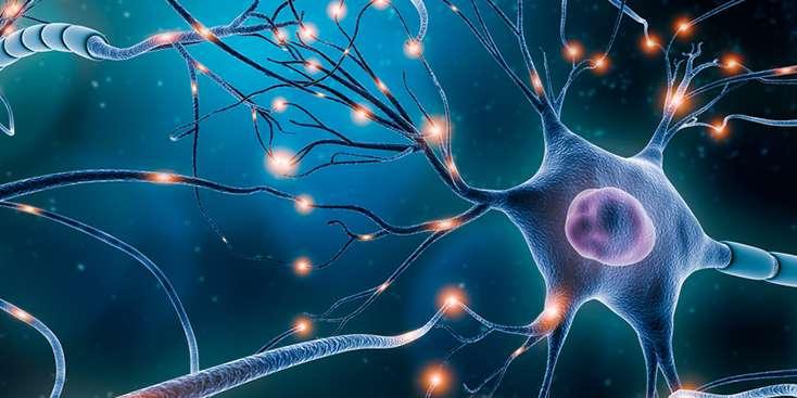 Nöral Terapi Hakkında Bilinmesi Gerekenler